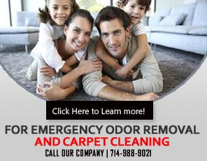 Video Channel - Carpet Cleaning Westminster, CA